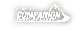 Cold Laser Therapy - Medicine River Animal Hospital