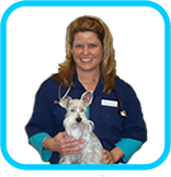 Veterinarian - Dr Shanna Green Medicine River Animal Hospital