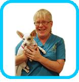 Veterinary Technician | Jill Williamson Medicine River Animal Hospital